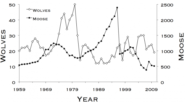 The Population Biology Of Isle Royale Wolves And Moose  An