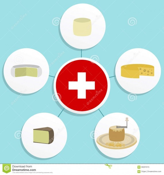 Five Swiss Cheese Stock Vector  Illustration Of Milk