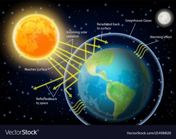 Greenhouse Effect Diagram Royalty Free Vector Image