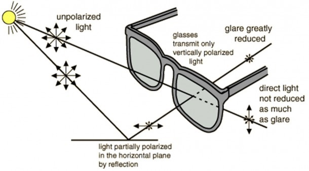 "So How Do Sunglasses Work "" – The Uptight Suburbanite"