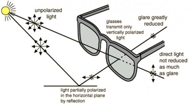 "So How Do Sunglasses Work "" – The Uptight Suburbanite"