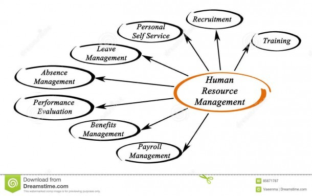 Human Resource Management Stock Image  Image Of Personal
