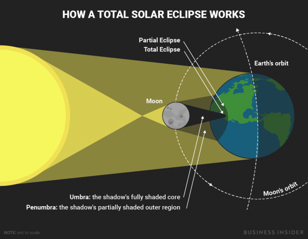 This Diagram Shows What Happens During A Total Solar Eclipse