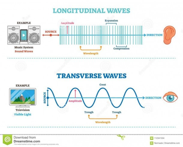 Longitudinal And Transverse Wave Type, Vector Illustration