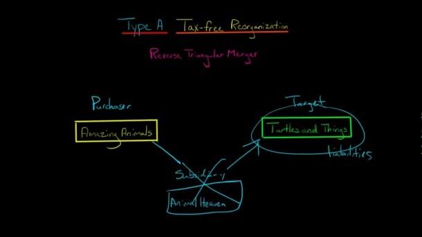 Reverse Triangular Merger Type A Tax Free Reorganization (u S