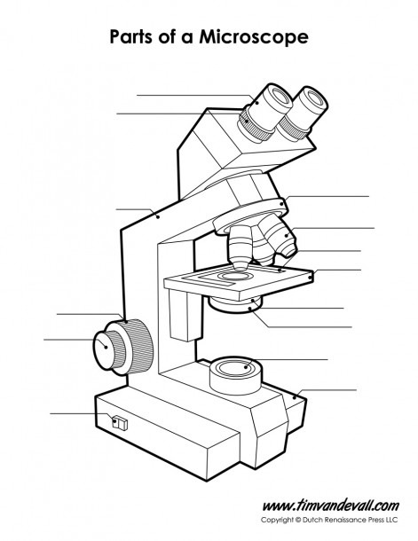 11 Part Drawing Light Microscope For Free Download On Ayoqq Org
