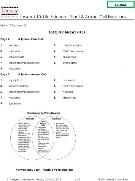 Lesson 4 10  Life Science Plant & Animal Cell Functions