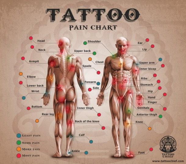 The Ultimate Tattoo Pain Chart