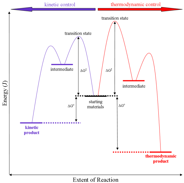 Thermodynamic Versus Kinetic Reaction Control