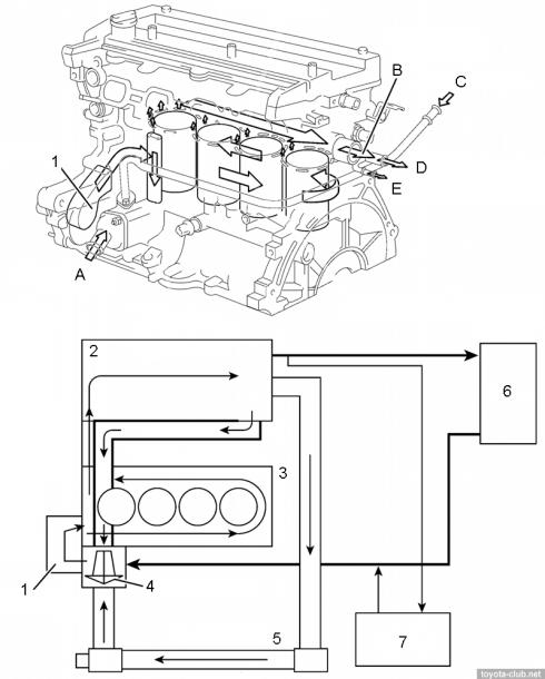Diagram Wiring Diagram Vios 1nz Full Version Hd Quality Vios 1nz Enlightengine Allanlelay Fr
